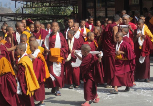 Buddhist monastery volunteering in Nepal